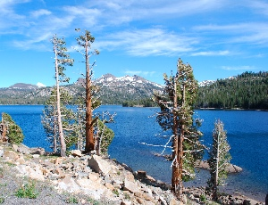 Caples Lake.JPG
