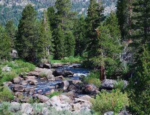 Carson River.JPG