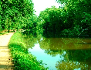 c and o canal.JPG