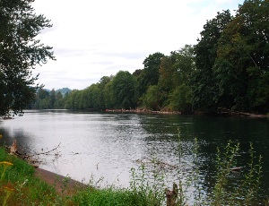 cowlitz river.JPG