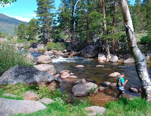 fly fishing on the Carson River.JPG