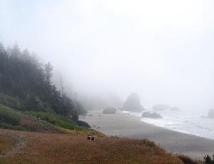 fog rolls in.JPG