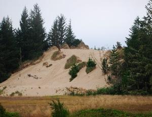 oregon dunes.JPG