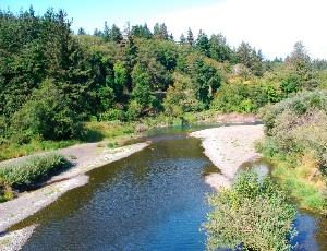 pretty creek.JPG