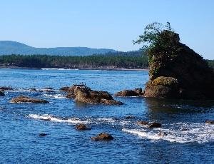 rocks in tilamook.JPG