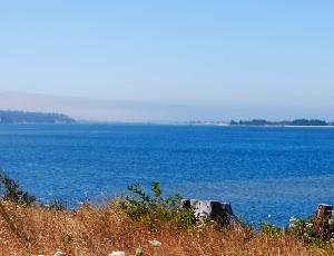 sea at coos bay.JPG