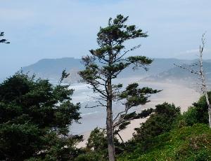 south of cannon beach.JPG