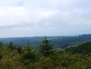 view before bandon.JPG